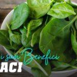 Spinaci: scopri suoi benefici