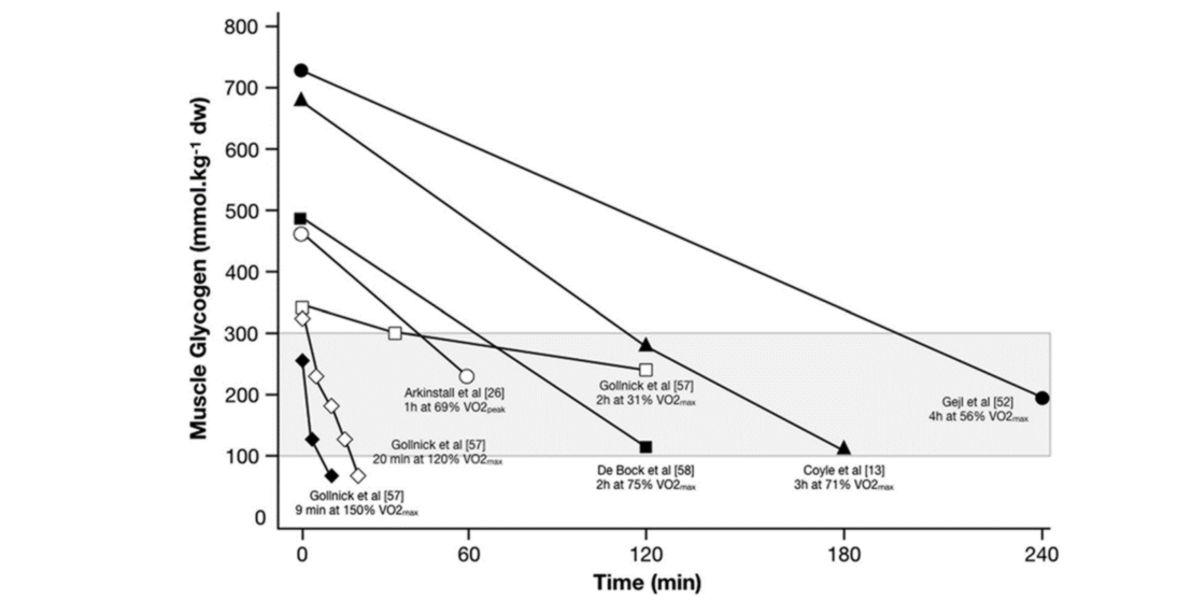 Concentrazioni di glicogeno