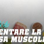 Dieta keto: aumentare la massa muscolare
