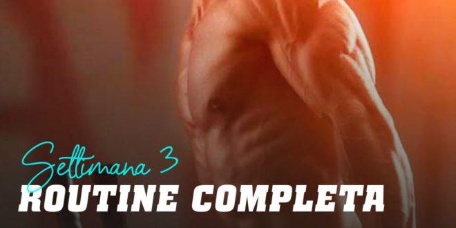 Routine Full Body per Ipertrofia. Settimana 3