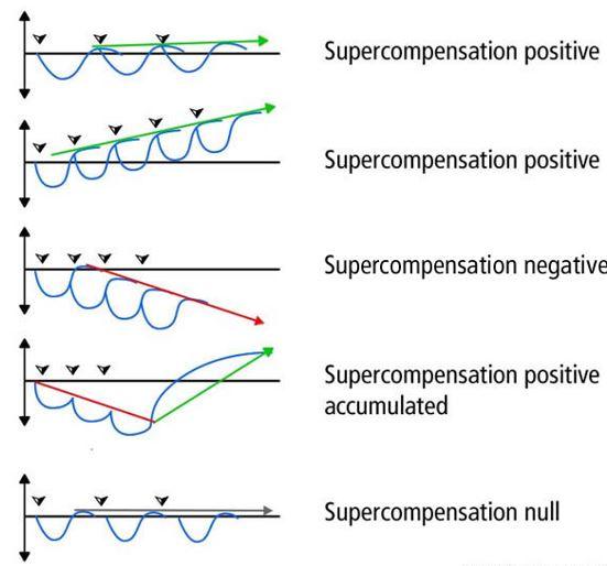 Profili di supercompensazione