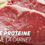 Quante proteine contiene la carne?