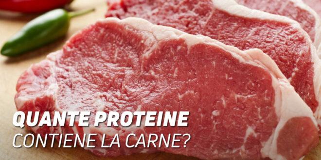 Quante Proteine contiene la Carne di Vitello?