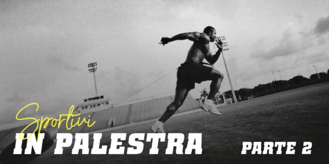 Guida HSN: Sportivi in Palestra. Parte 2