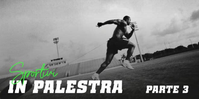 Guida HSN: Sportivi in Palestra. Parte 3
