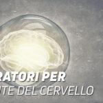Integratori per la salute del cervello
