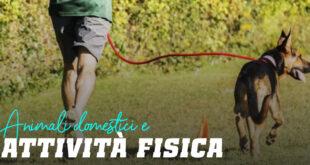 Animali Domestici e Attività Fisica