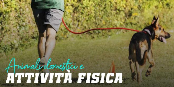 Animali Domestici e Attività Fisica: Una Relazione da 10!