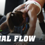 Routine di Allenamento Animal Flow