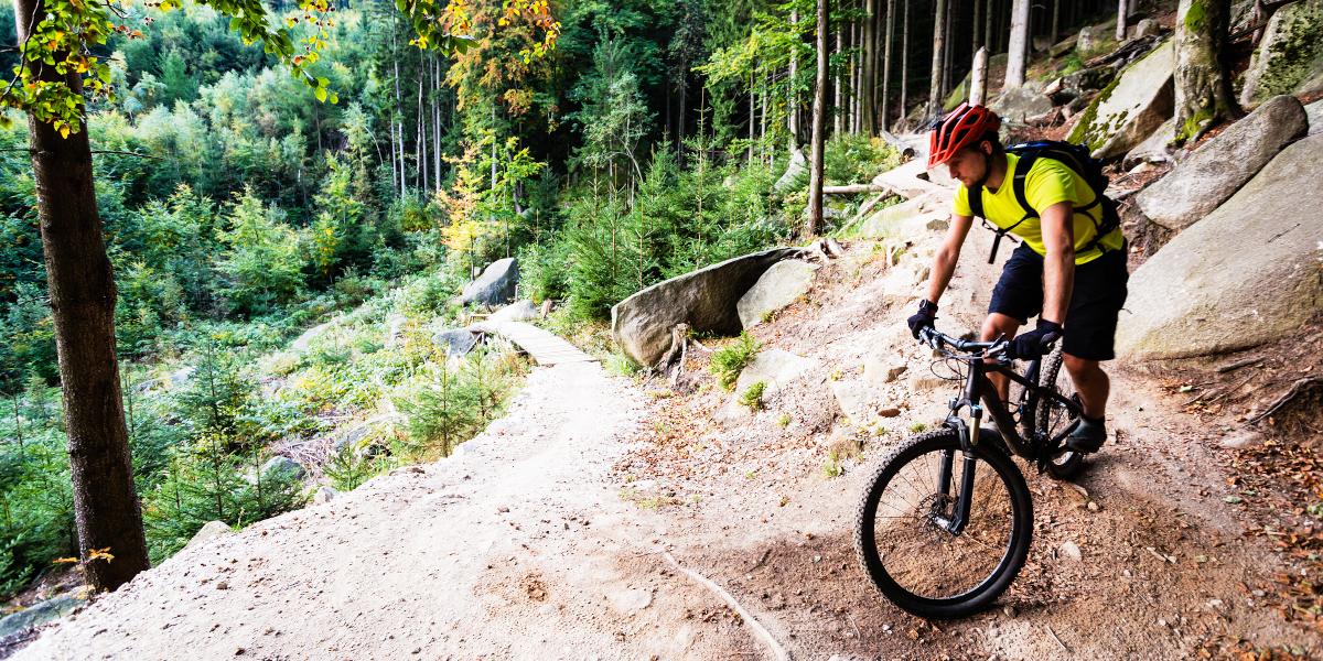 Mountain bike o ciclismo su strada, qual è meglio?