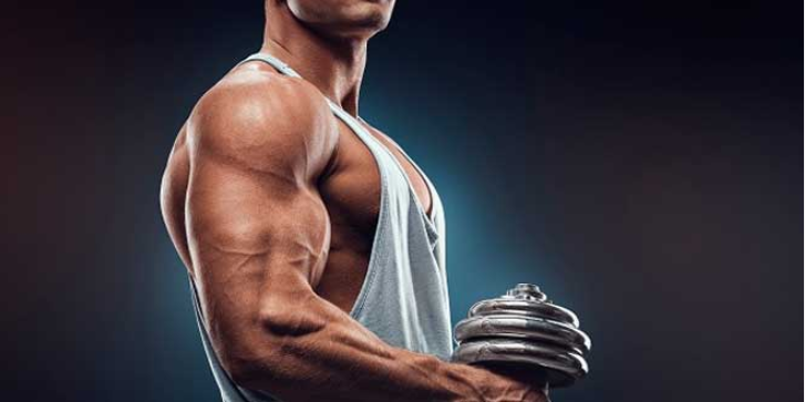 Perché assumere Whey Protein Concentrate?