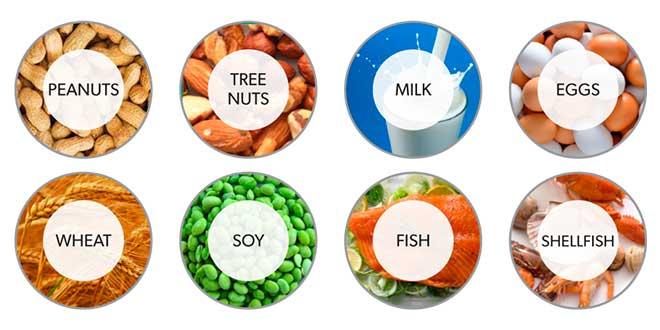 Protéines et allergies alimentaires