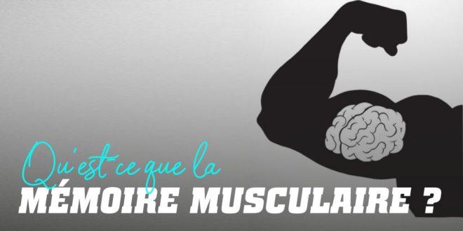 Qu'est-ce que la mémoire musculaire ?