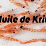 huile-de-krill