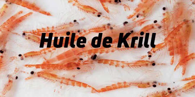 Huile de Krill – Propriétés et Avantages