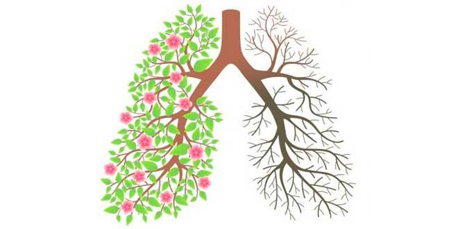 Tabac et Poumons