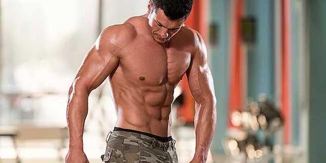 L'ashwagandha augmente le taux de testostérone