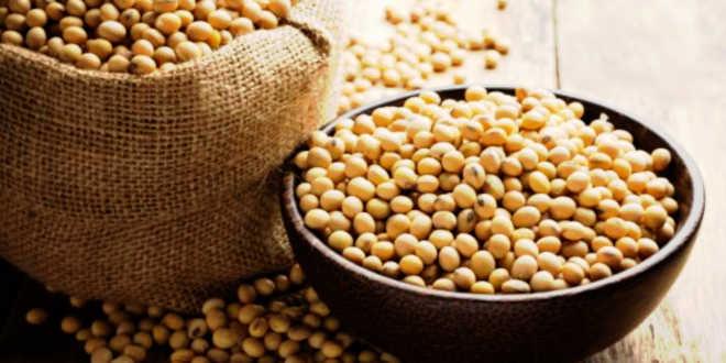 Propriétés de la lécithine de soja
