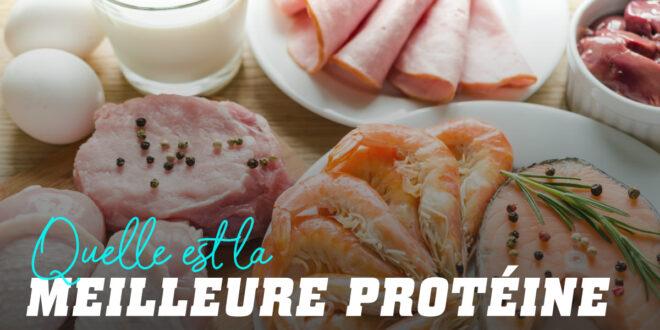 Quelle est la meilleure protéine ?