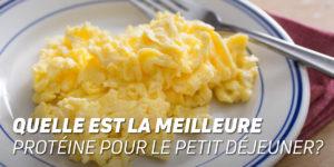 La meilleure protéine pour le petit déjeuner