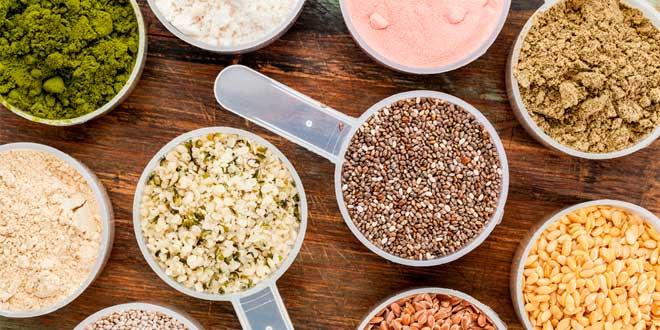 Découvrir des Protéines sans Lactose