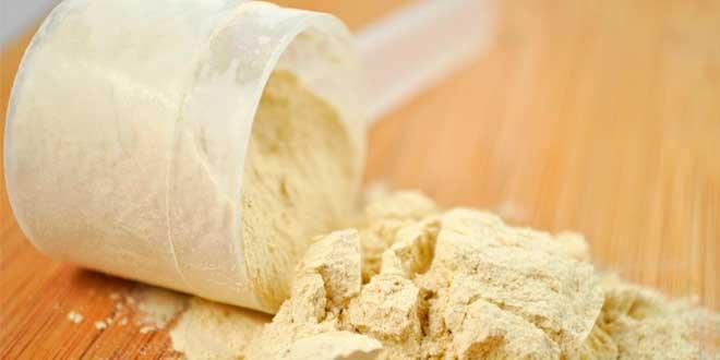 Protéine sans gluten