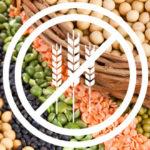 Protéines végétaliennes pour coeliaques