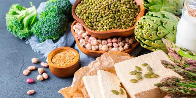 Sources Protéines Végétaliennes