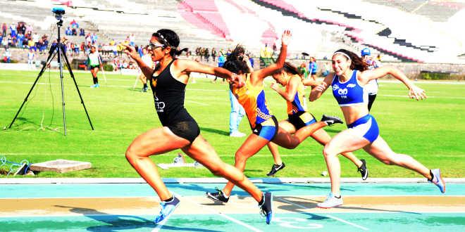 Fibres rapides et résultats sportifs