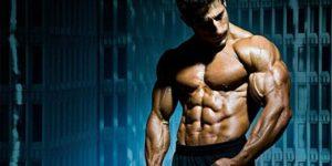 Aliments pour le testostérone