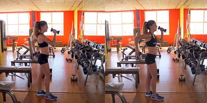 Renforcer les biceps