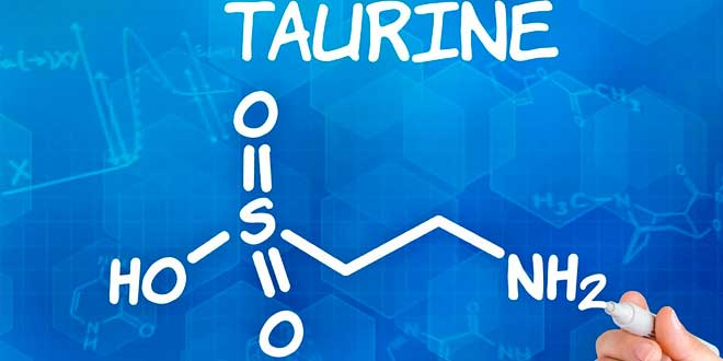 L-Taurine: Propriétés et Avantages