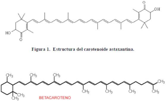 Structure de l'Astaxanthine