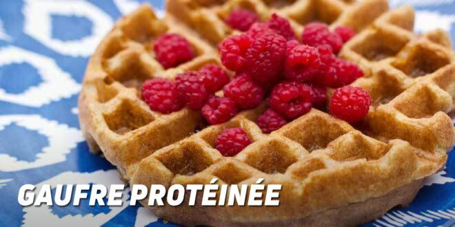 Gaufre Protéinée