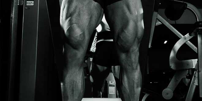 Gain musculaire