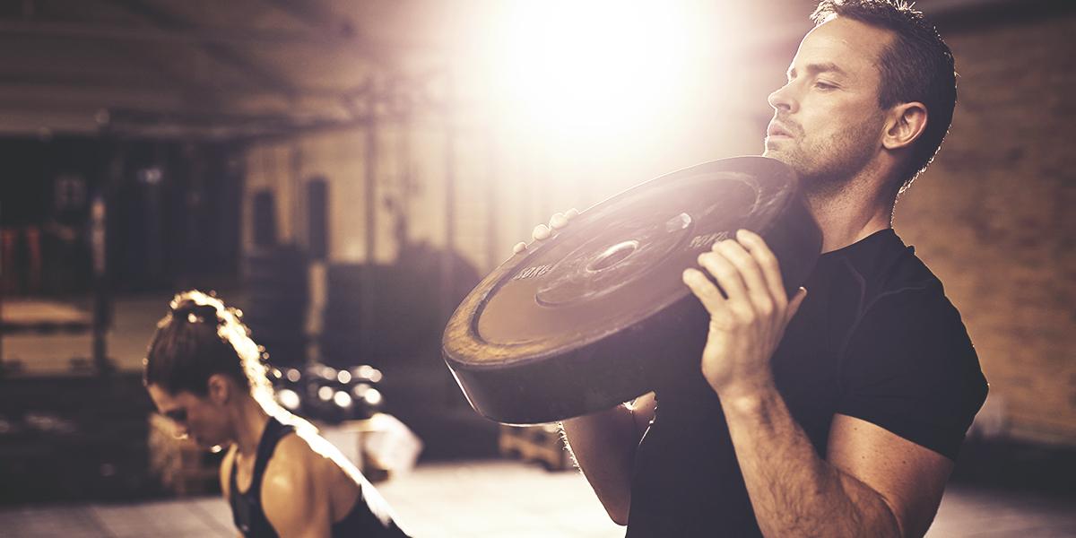 Myostatine et masse musculaire
