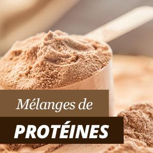 Protéines et shakes protéines