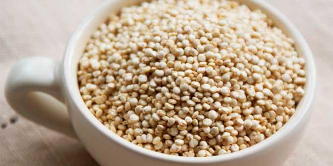 Quinoa et Glucides