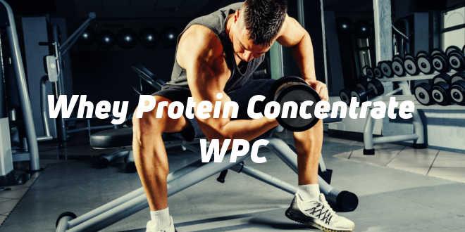 Whey Protein Concentrate ou Protéines Concentrées de Lactosérum