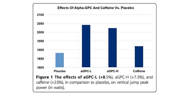 Effets de alpha gpc