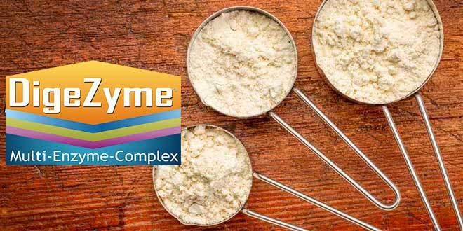 DigeZyme ®, un complexe enzymatique breveté