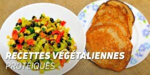 Recettes végétaliennes protéiques