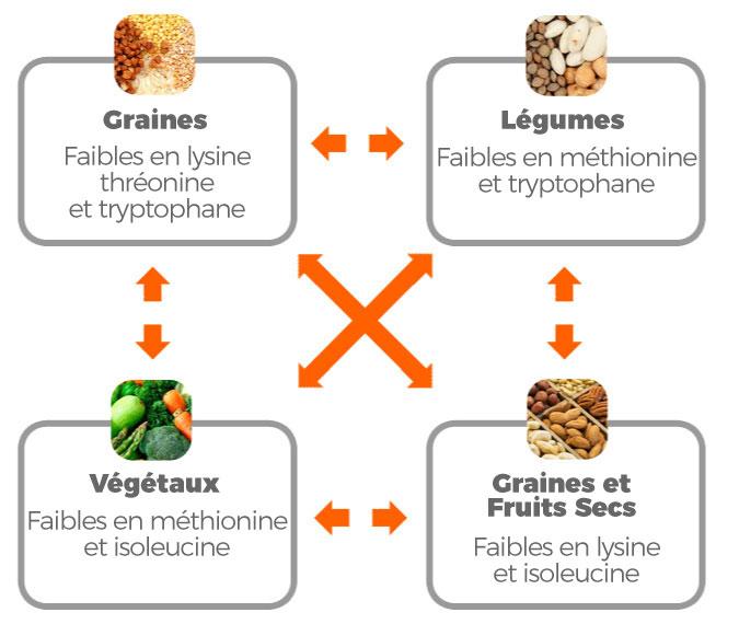 Sources végétaliennes