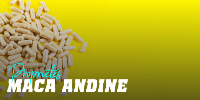 Maca Andine – Propriétés et Avantages, À quoi Sert-elle…