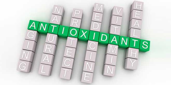 Quels sont les meilleurs antioxydants?