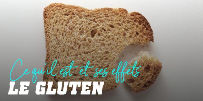 Qu'est-ce que le Gluten, et que provoque-t-il?
