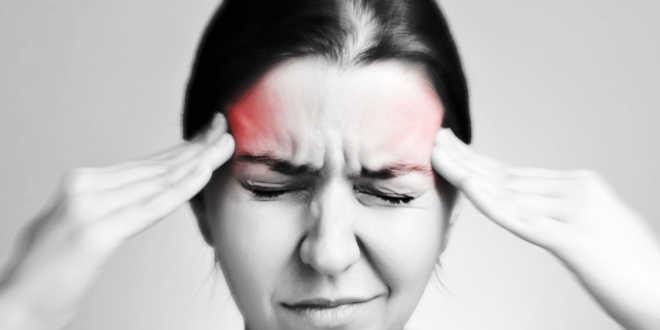 Échinacée pour la migraine