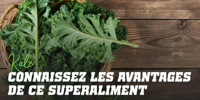 Le Chou Frisé, Super aliment: ce Qu'il est, ses Propriétés et ses Recettes
