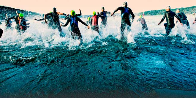 Sports d'Endurance et Acides aminés