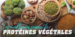 Les meilleures sources de protéines végétales
